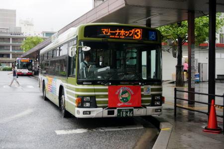 DSC03795.jpg