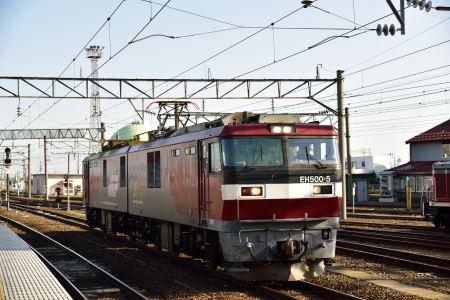 DSC_8674.jpg